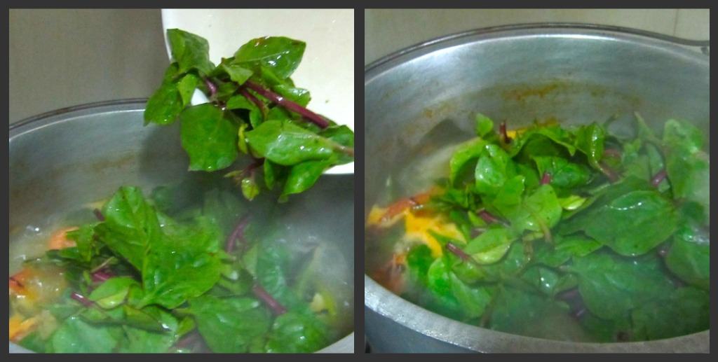malunggay and spinach powder